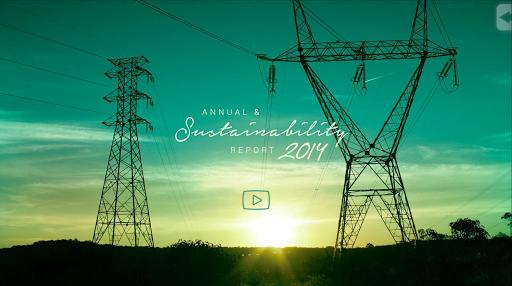CEMIG - 2014 Report