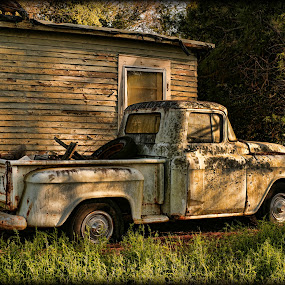 Lost In Time by Larry Landry - Transportation Automobiles ( 55 automobiles, chevy pickups, old trucks, 55 chevy pickup, classic trucks, chevy )