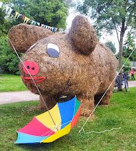 Photo: Schwein oder Riesenmaus?