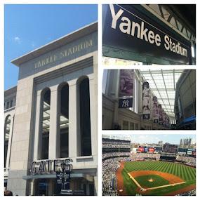 Yankee Stadium. #nyc #yankees #stadium #baseball #mlb #statigram #sports #igdaily by Alex Santos - Instagram & Mobile Instagram