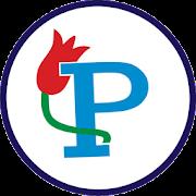 PP-ERP
