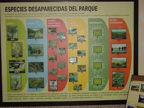 Photo: Panel explicativo de la extinción de especies  en el Parque Regional