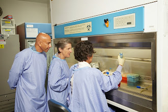 Photo: L-R: In the Skin Tissue Culture Laboratory, Mr Dion Martinus (Quality Officer), Ms Heather Cleland (Director, Burns Unit) and Dr Shiva Akbarzadeh (Senior Research Fellow). In addition to producing cultured keratinocytes for clinical use, the laboratory conducts research directed to the development of a tissue engineered 3-dimensional skin construct. http://www.med.monash.edu.au/surgery/alfred/research/skin-tissue-lab.html Image: Ben Capp