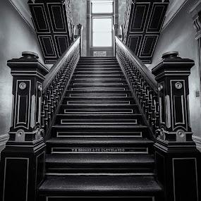 by Hamish Carpenter - Black & White Buildings & Architecture ( #mansfieldreformatory #staircase #getolympus #ohio #blackandwhite )