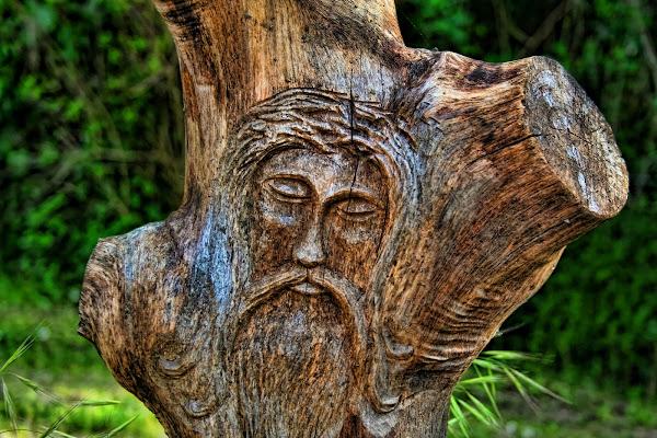 Scultura su  tronco di legno di Gianluca Presto