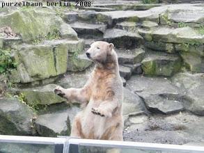 Photo: Hallooo, Ihr da draussen ;-)