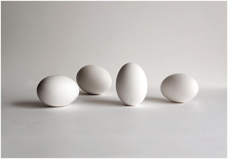 L'uovo di Colombo di carlo-bi