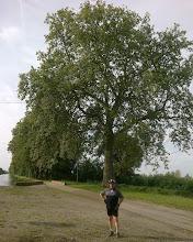 """Photo: Un """"petit platane"""" avec un cycliste de rencontre"""