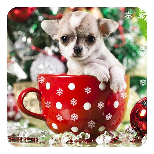 Süße Weihnachtsbilder.Christmas Animals Lwp Apps Bei Google Play