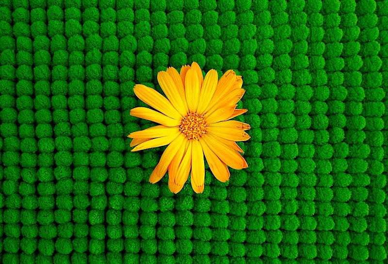 tappeto verde di Marygio16