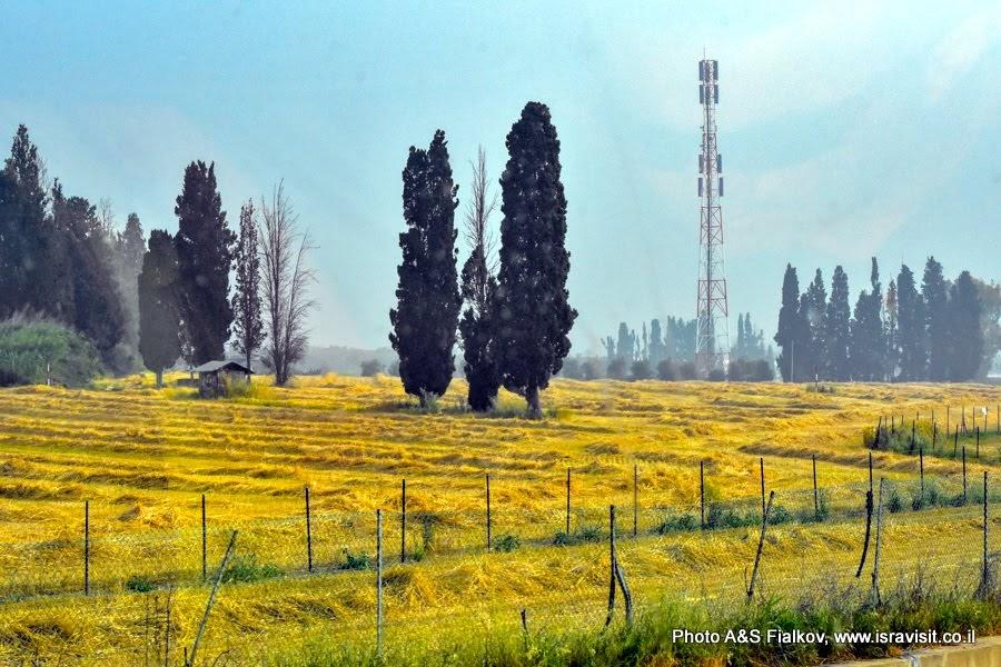 Пейзаж Галилеи. Экскурсии в Израиле.
