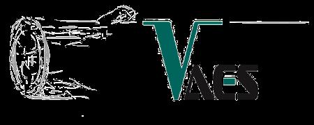 CWS - DHZ Vaes logo