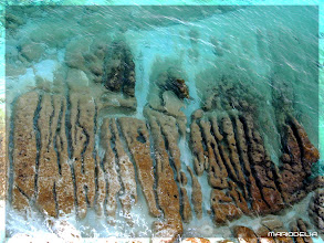 Photo: Sea Bed From Above