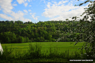 Photo: unser Blick aus dem Garten ins Blautal