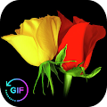 Flowers And Roses Animated Images Gif pictures 4K APK