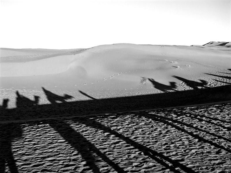 natural Sahara di Ale Brigante