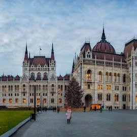 Parlament by Albin Bezjak - Buildings & Architecture Public & Historical