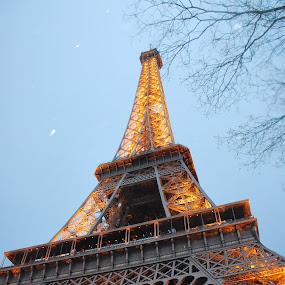 Twilight In Paris by Azzah Rahman - Artistic Objects Still Life ( eiffel tower, paris, twilight, france, pwcstilllife, nightfall, dusk )