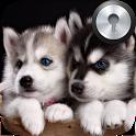 Siberian Husky Lock Screen icon