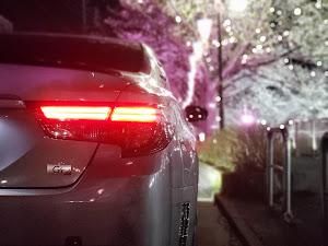 マークX G's  350G'sのカスタム事例画像 ぱいもんさんの2020年03月24日19:34の投稿