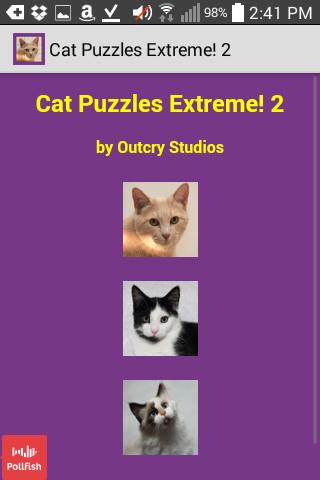 Cat Puzzles Extreme 2