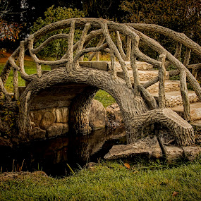 The Bridge to Adventure by Pat Eisenberger - City,  Street & Park  City Parks ( tree, wood, autumn, fall, forest, bridge, branches )