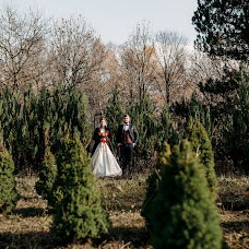 Wedding photographer Alena Franc (Franz). Photo of 11.09.2018