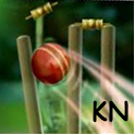 Cricket Launcher icon