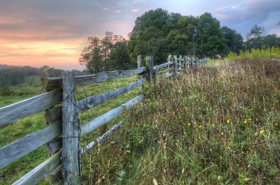 sunrise off the parkway by Steven Faucette - Landscapes Prairies, Meadows & Fields ( field, fence, mountain, blue ridge parkway, sunrise )
