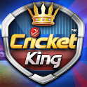 Cricket King™ - by Ludo King developer icon