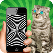 Real Hypnotizer For Cats