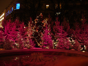 Photo: Farther down, flocked trees with rotating colored lights.