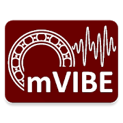 mVIBE vibration meter/analyzer