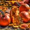 Pumpkin Aftermath.jpg