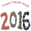 New Year 2016 Images Wp icon