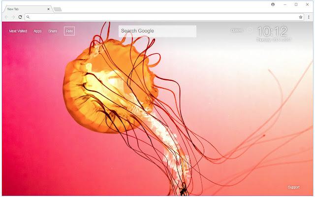 Jellyfish HD Wallpaper New Tab Themes