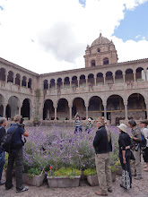 "Photo: Cathedral courtyard with Inca ""bathtub"" hidden behind purple flowers."