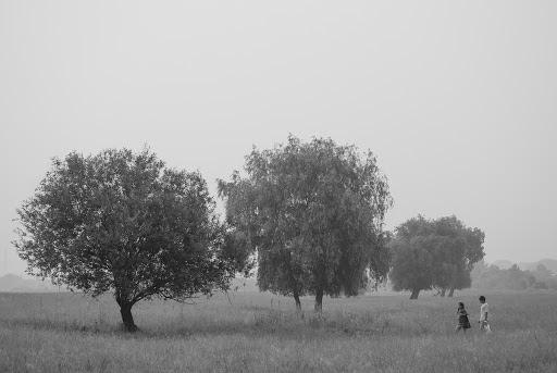 Свадебный фотограф Александр Берц (AleksBerts). Фотография от 28.02.2016