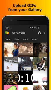 GIF to Video apk download 1