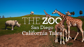 The Zoo: San Diego - California Tales thumbnail