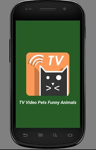 TV Video Pets Funny Animals