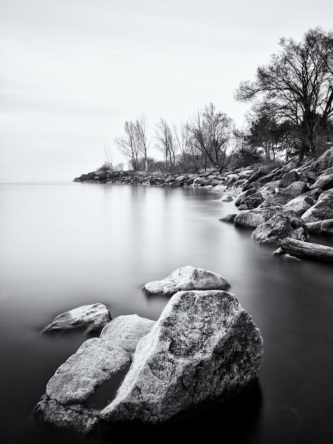 Rocks B&W by Steve McCaffrey - Black & White Landscapes ( clouds, water, canada, toronto, ontario, lake, rock, lake ontario, blackandwhite, sky, nature, tree, trees, long exposure, longexposure, rocks )