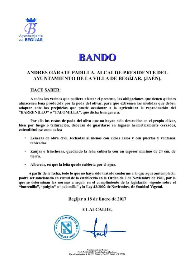 Bando Barrenillo Palomilla