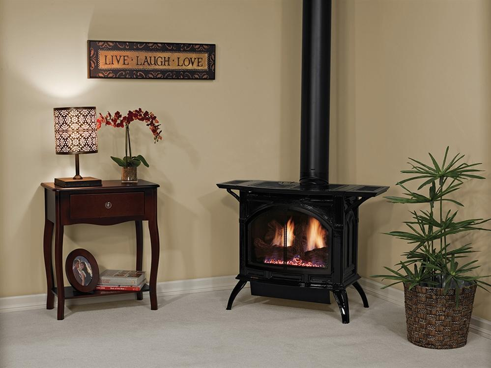 Fireplaceinsert.com, White Mountain Hearth by Empire Direct Vent Cast Iron  Gas Stove DVP30 (Medium)