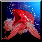 Red Arowana LiveWallpaper