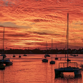 sunset in Mauritius  by Peter Schoeman - Transportation Boats ( orange, reflection, sunset, shadows, boats, water, silhouettes )