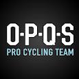 OPQS eBook