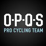 OPQS eBook Icon
