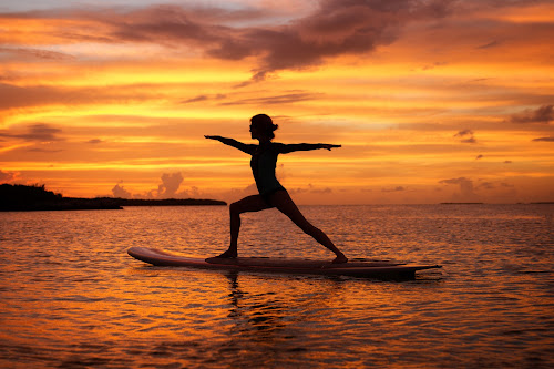 Warrior by Troy Wheatley - Sports & Fitness Other Sports ( water, warrior, sunset, woman, paddle board, , #8rtcoMagazine )