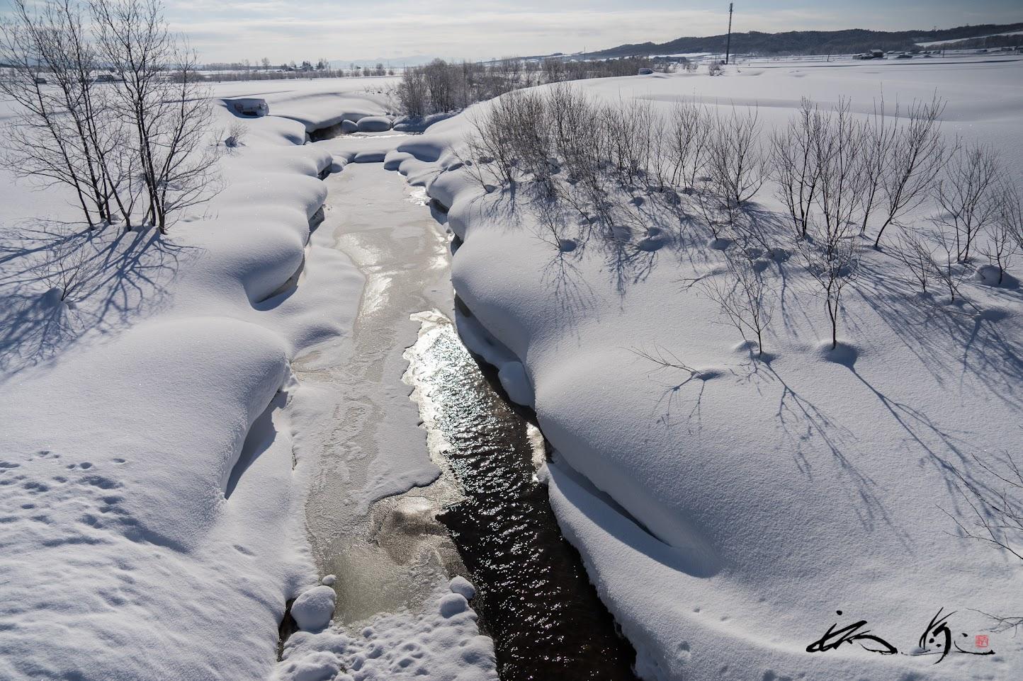 雪をかぶり凍りつく川